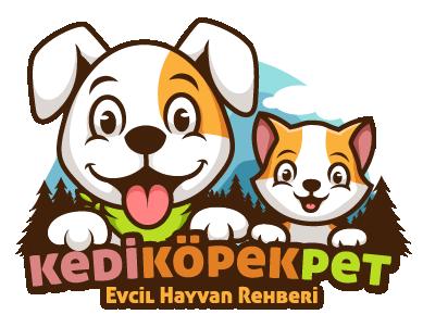 Kedi Köpek Pet - Evcil Hayvan Rehberi
